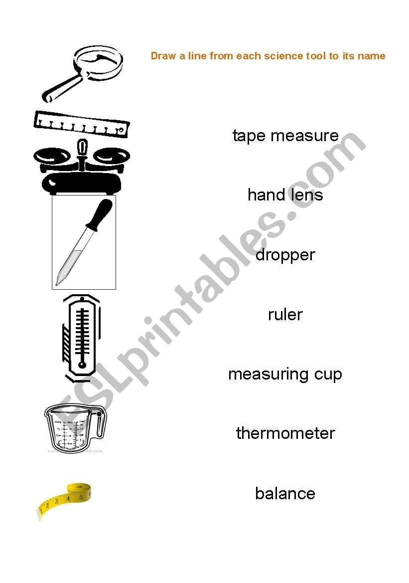 English Worksheets Science Tools With Science Tools Worksheet
