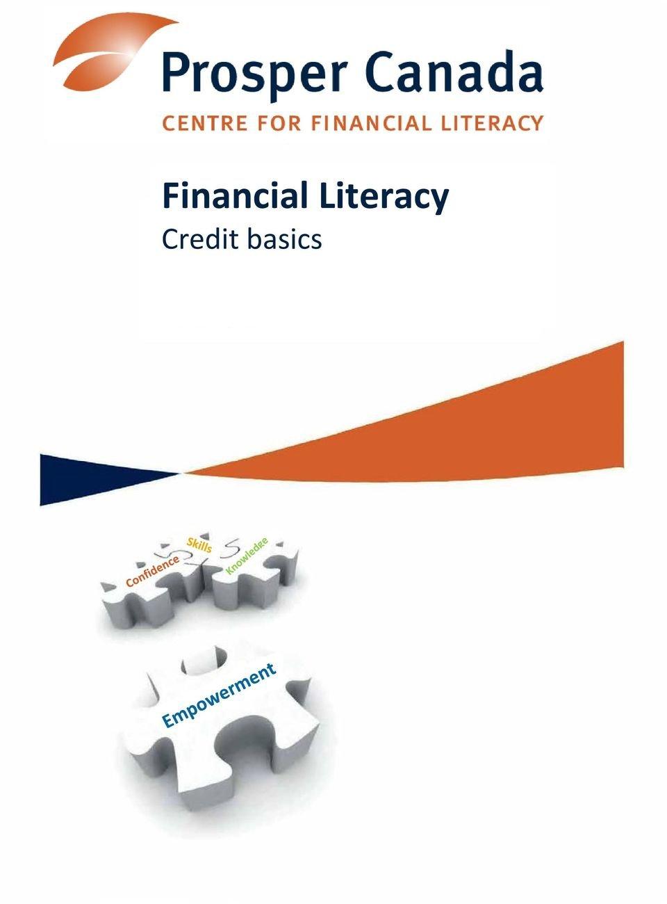Financial Literacy Credit Basics  Pdf Within Financial Literacy Credit Basics Worksheet