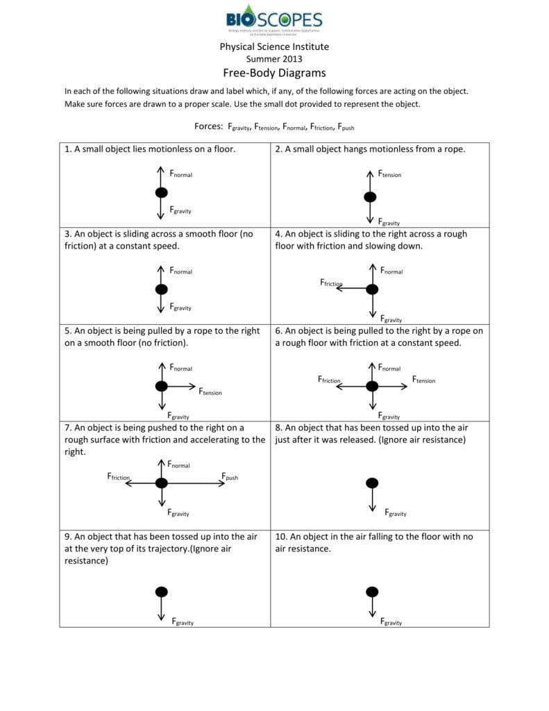 Freebody Diagrams Worksheet Answer Key Intended For Worksheet 2 Drawing Force Diagrams