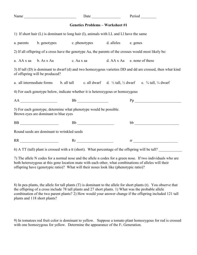 Genetics Problems – Worksheet 1 Together With Genetics Problems Worksheet 1 Answer Key