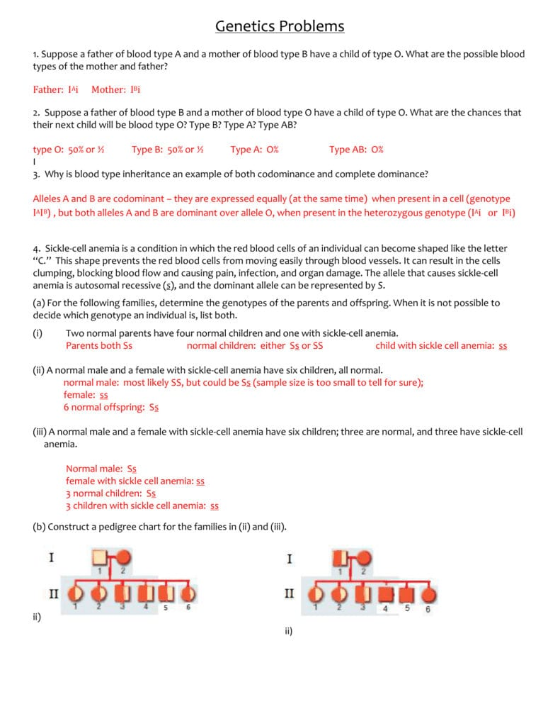 Genetics Problems Worksheet Answers With Regard To Genetics Problems Worksheet 1 Answer Key