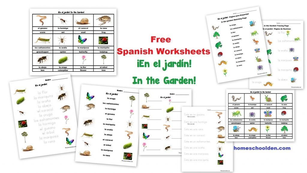 Los Números – Free Spanish Numbers Worksheets  Homeschool Den Together With Spanish Worksheets For Kids