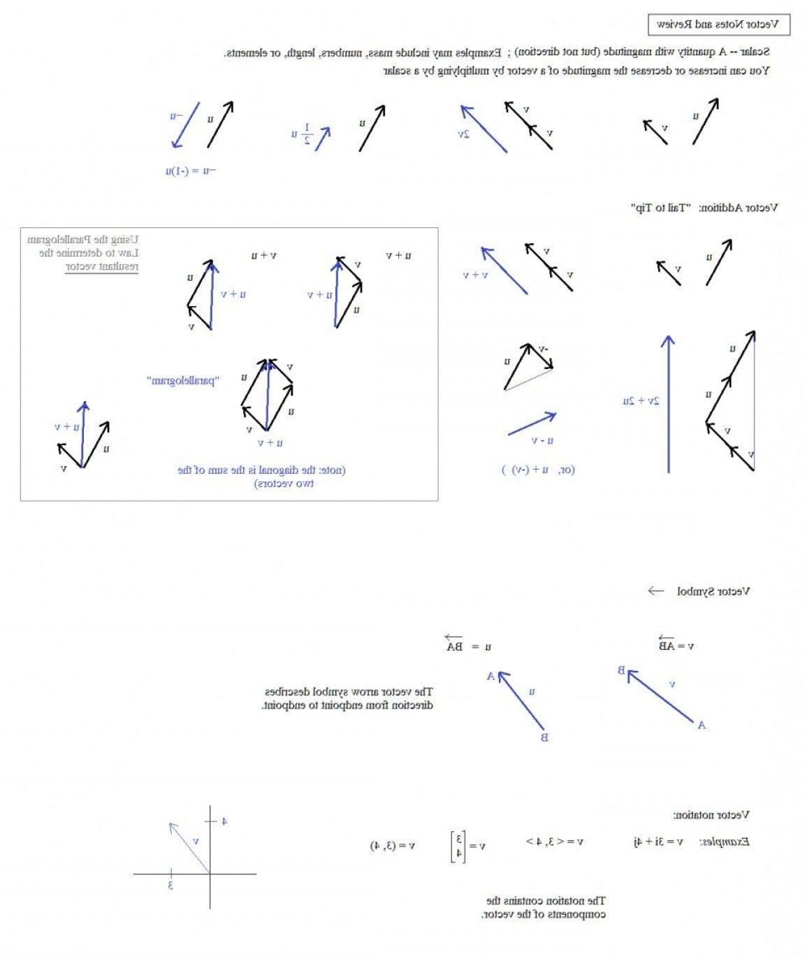 Math Worksheets Vectors Middle School Worksheet Resultant Vector In Middle School Math Worksheets