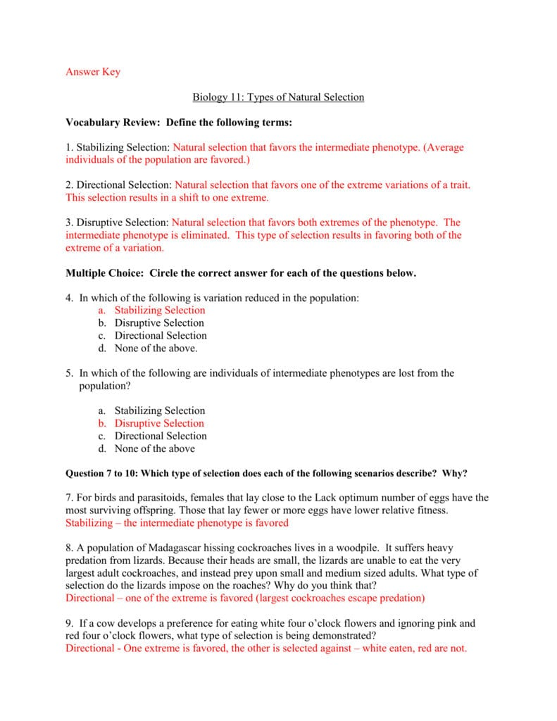 Mechanisms Of Evolution Worksheet Within Evolution By Natural Selection Worksheet Answers