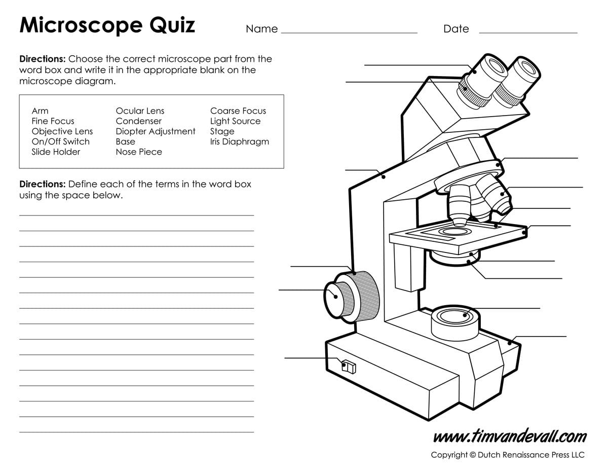 Microscope Diagram Labeled Unlabeled And Blank  Parts Of A Microscope Also Microscope Parts And Use Worksheet