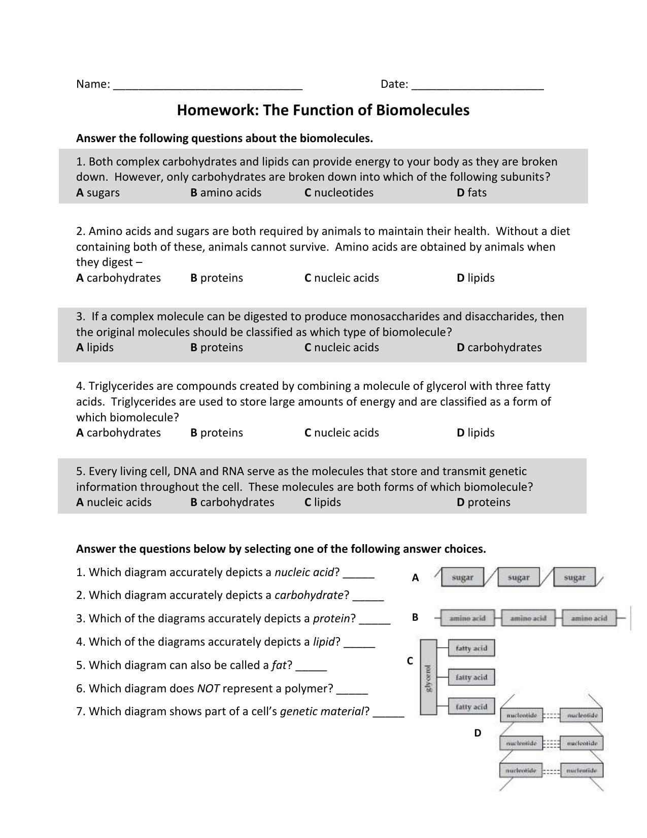 Name  Date Homework The Function Of Biomolecules Answer Pertaining To Biomolecules Worksheet Answer Key