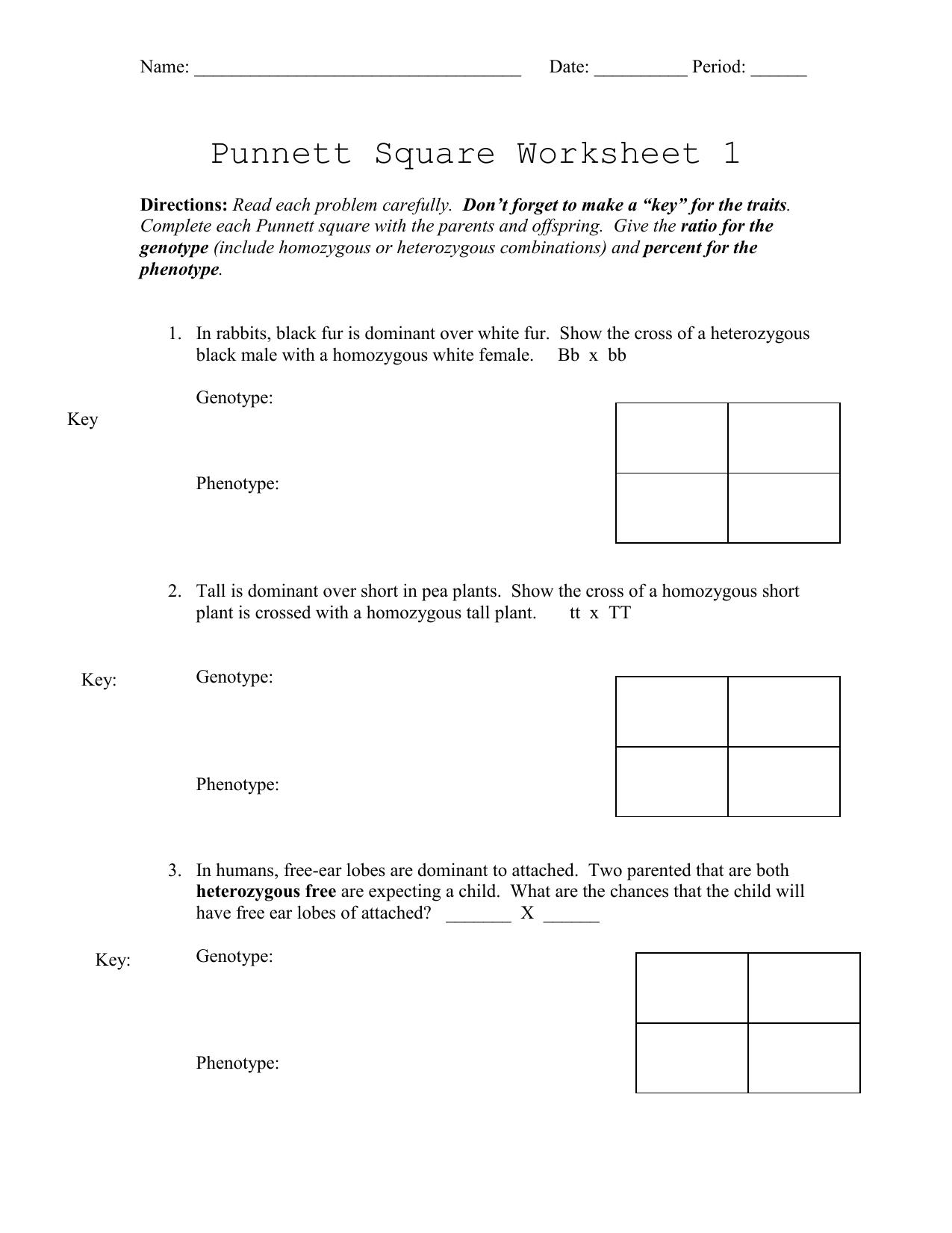 Punnett Square Worksheet 1 For Punnett Square Worksheet 1 Key