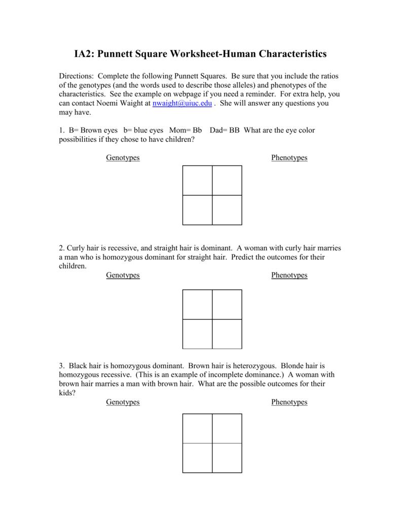 Punnett Square Worksheet With Punnett Square Practice Problems Worksheet