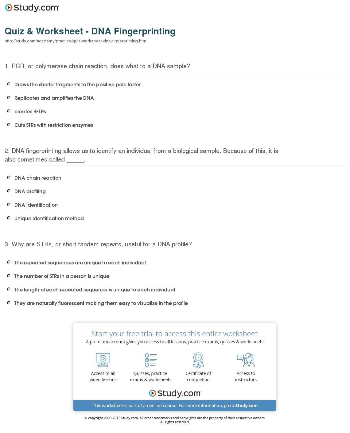 Quiz  Worksheet  Dna Fingerprinting  Study And Dna Profiling Worksheet