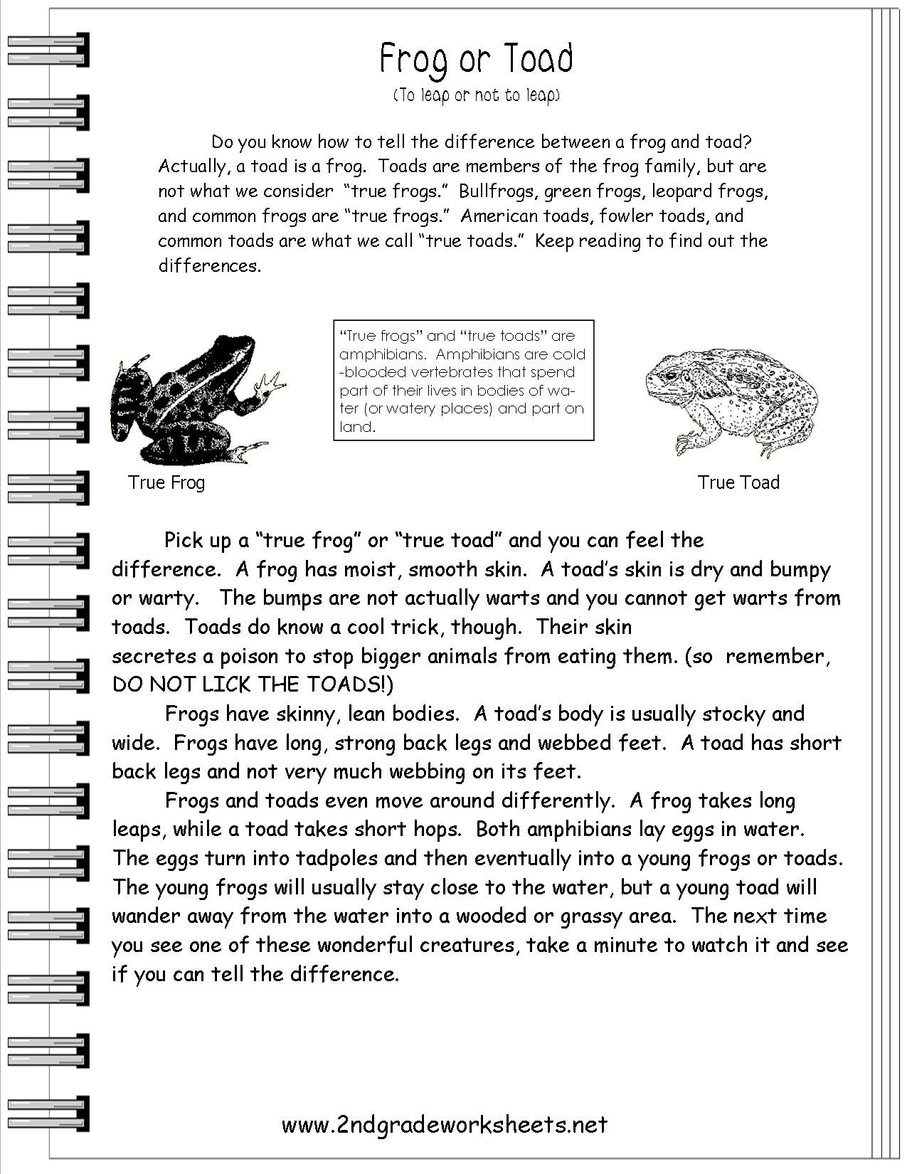 Reading Informational Text Worksheets Regarding Informational Text Worksheets