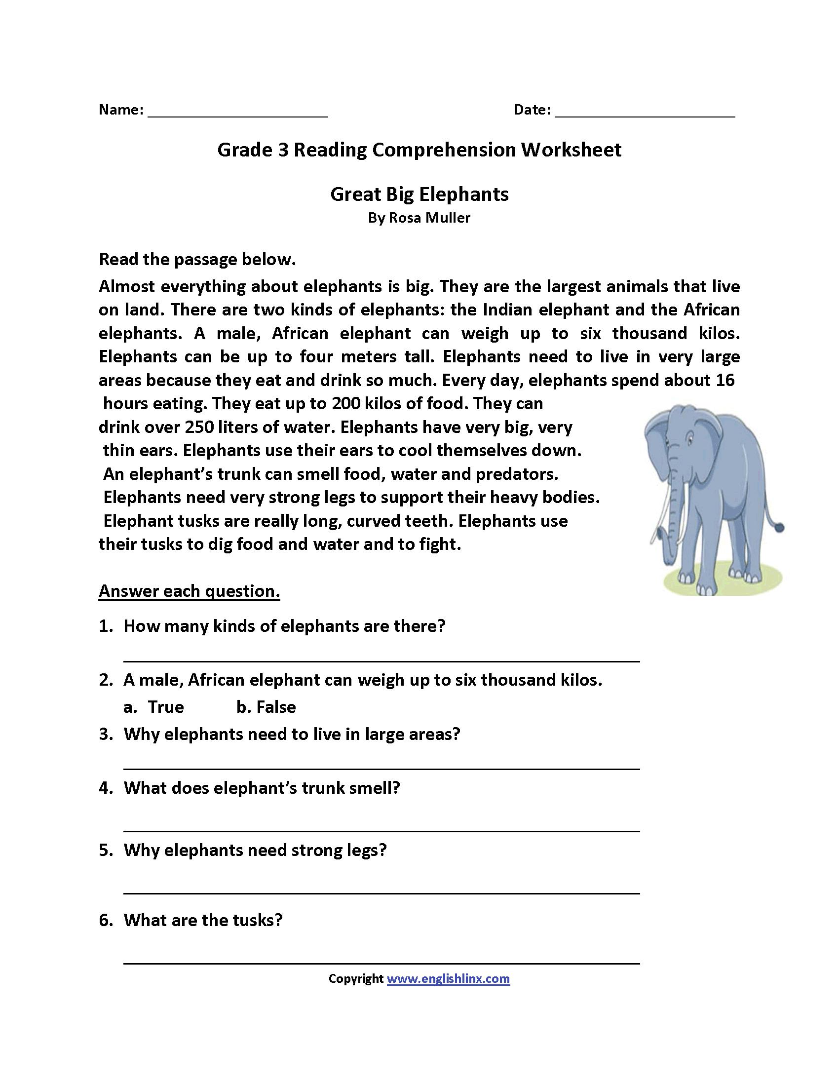 Reading Worksheets  Third Grade Reading Worksheets For 3Rd Grade Comprehension Worksheets