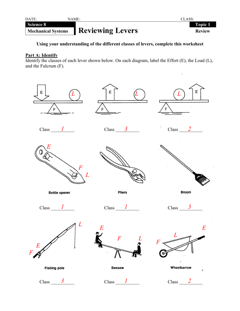 Reviewing Levers Along With Types Of Levers Worksheet Answers