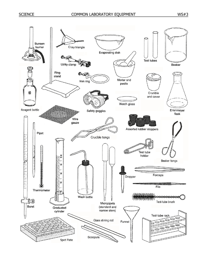Science Common Laboratory Equipment Ws3  Youngswiki Throughout Lab Equipment Worksheet