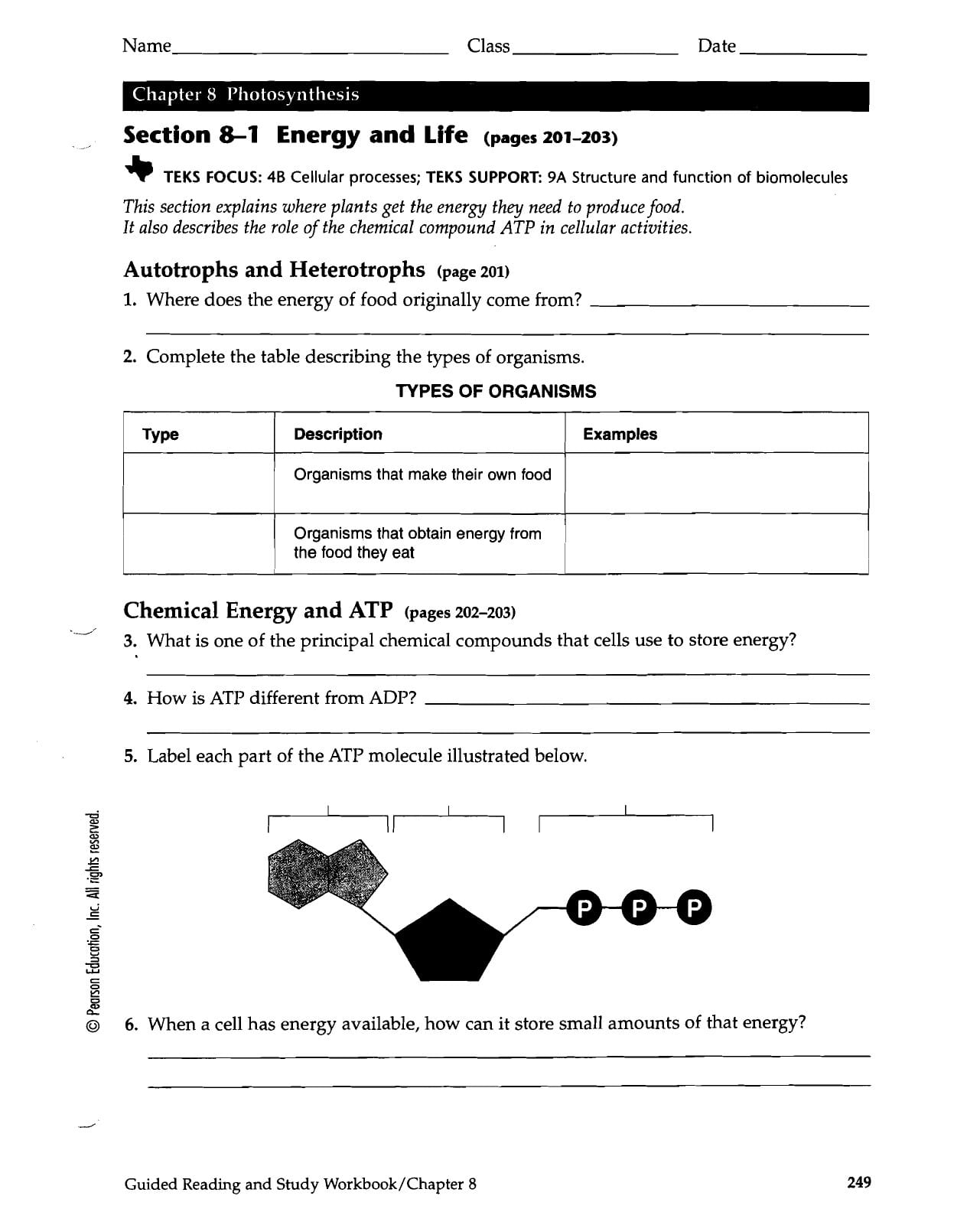 8 1 Energy And Life Worksheet Answer Key — excelguider.com