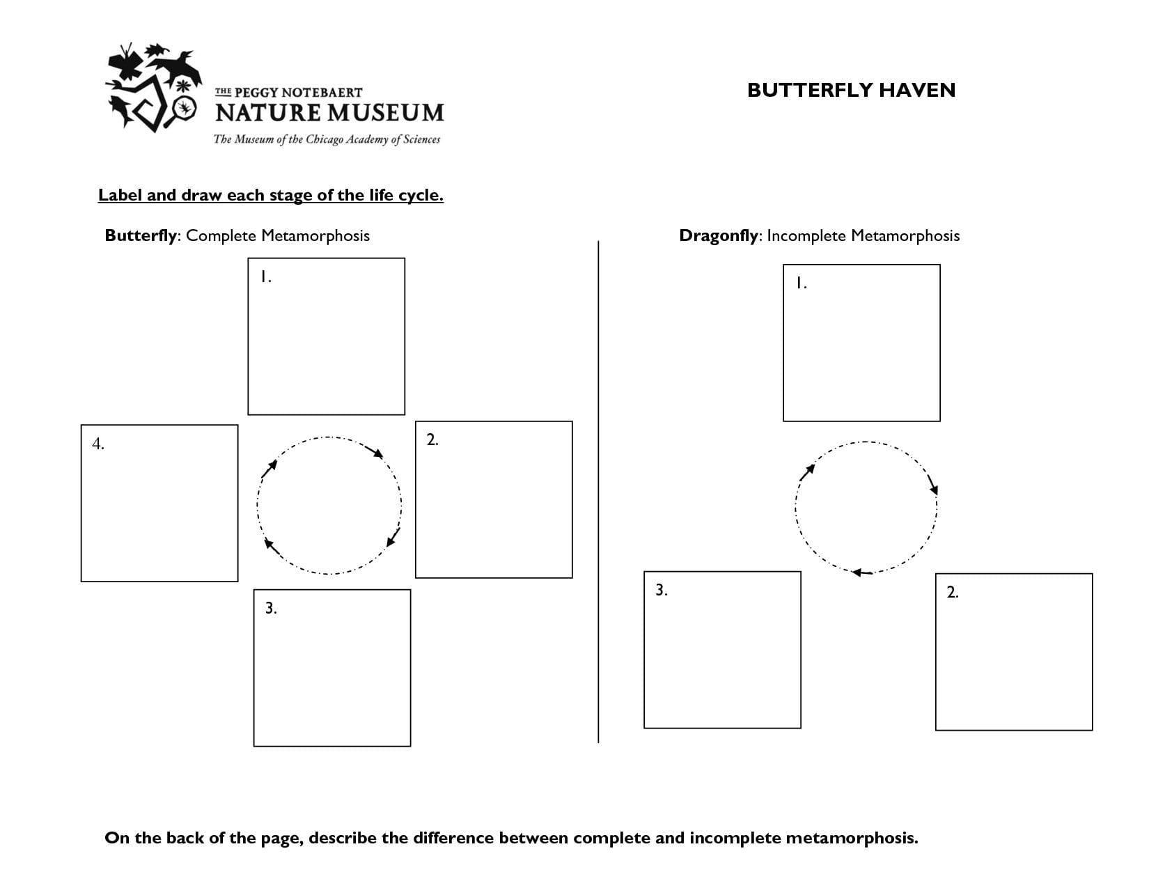 Spidergram Worksheet Elizabeth  Briefencounters Worksheet Template Regarding Spidergram Worksheet Elizabeth