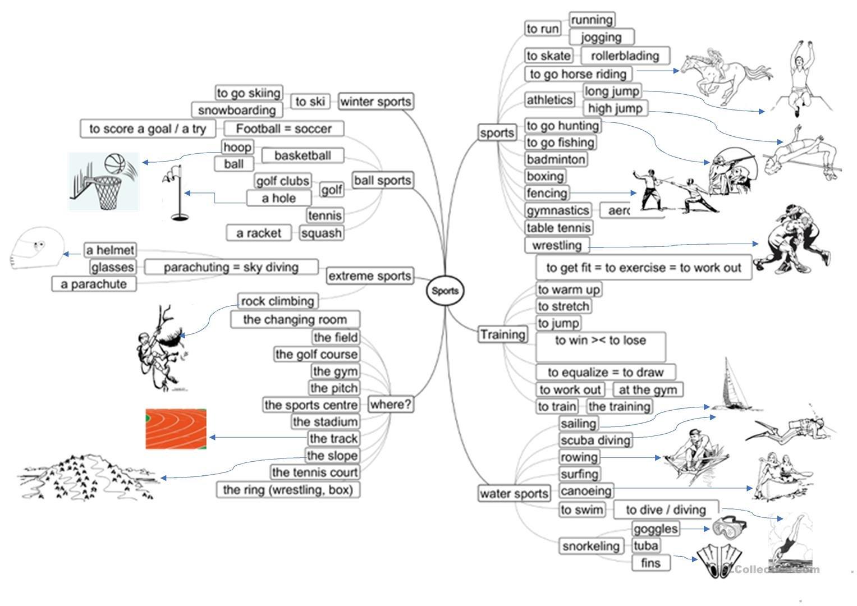 Sports Mind Map Intermediate Worksheet  Free Esl Printable Or Mind Map Worksheet