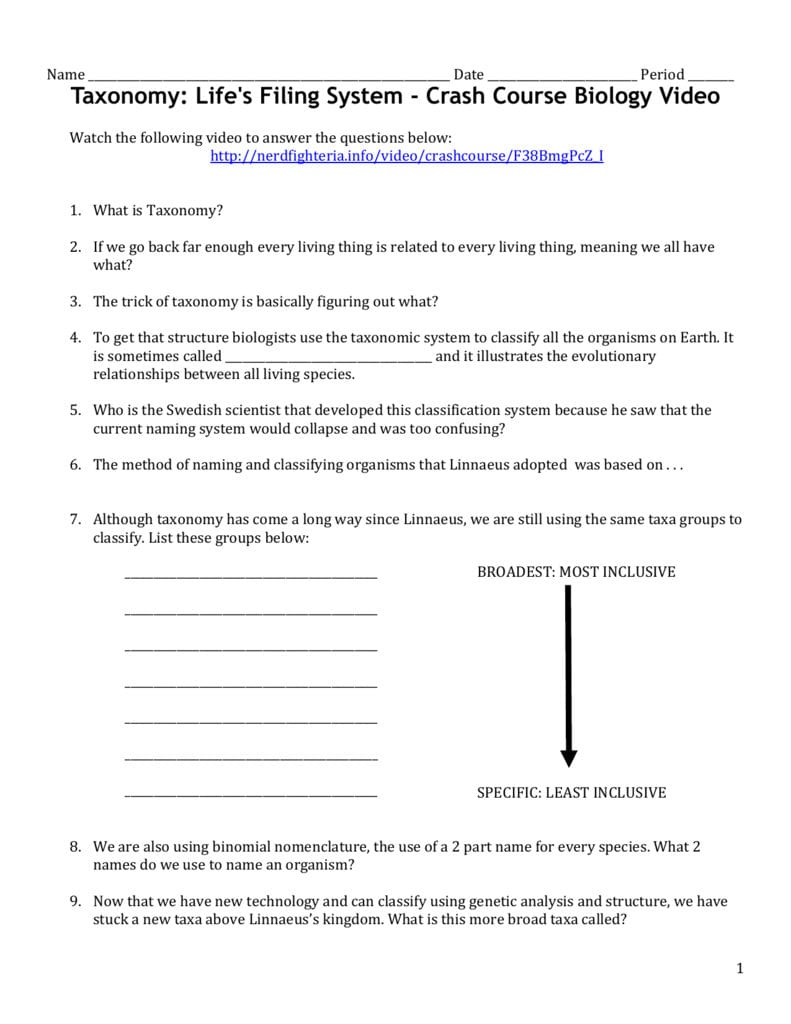 Taxonomy Video Worksheet As Well As Taxonomy Worksheet Biology Answers
