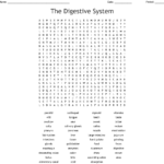 The Digestive System Word Search  Wordmint In Digestion Worksheet Answer Key