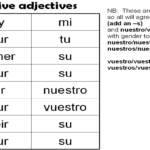 Worksheet 2 Possessive Adjectives Spanish Answers  Briefencounters In The Gender Of Nouns Spanish Worksheet Answers