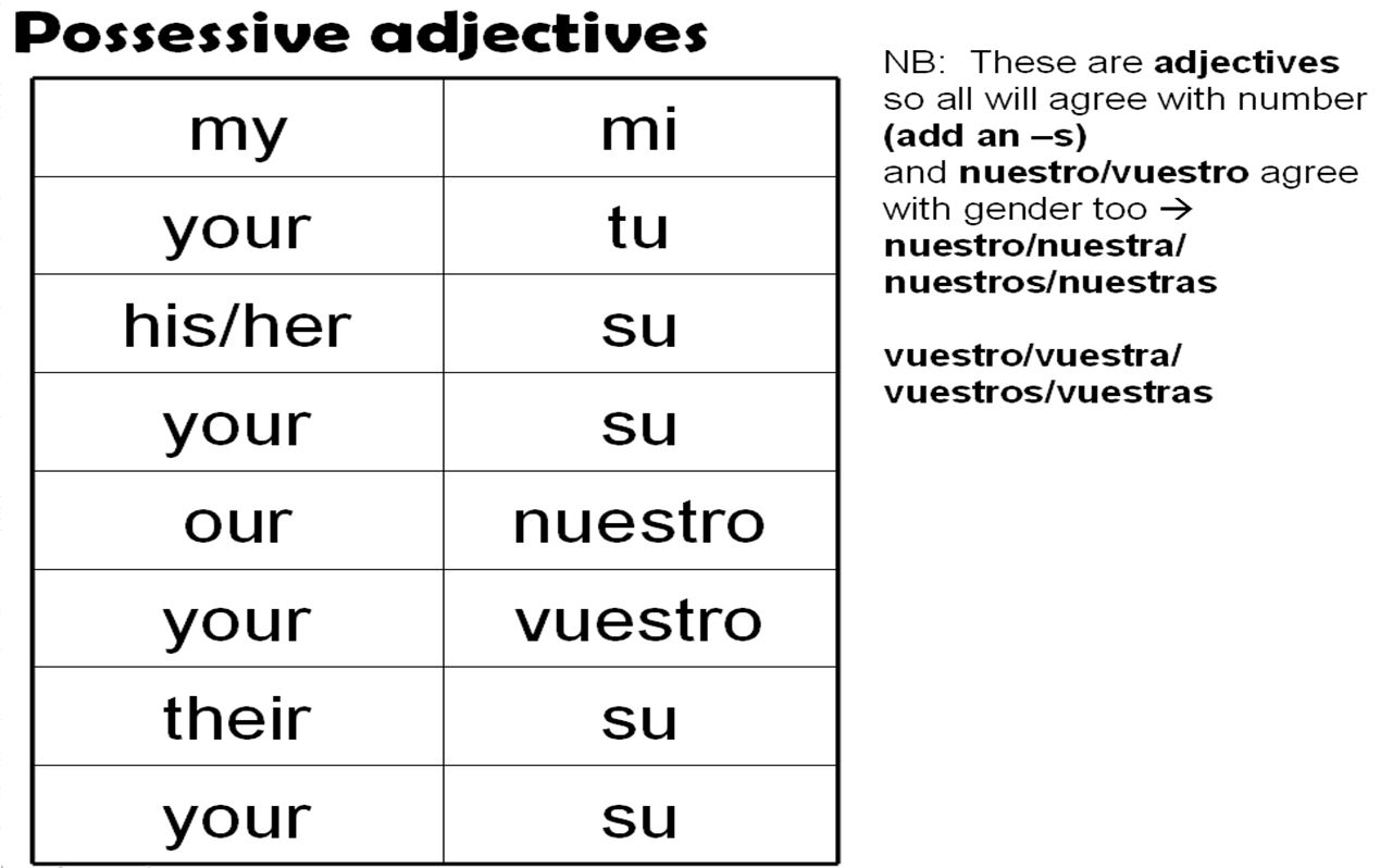 Worksheet 2 Possessive Adjectives Spanish Answers  Briefencounters Intended For Worksheet 2 Possessive Adjectives Spanish Answers