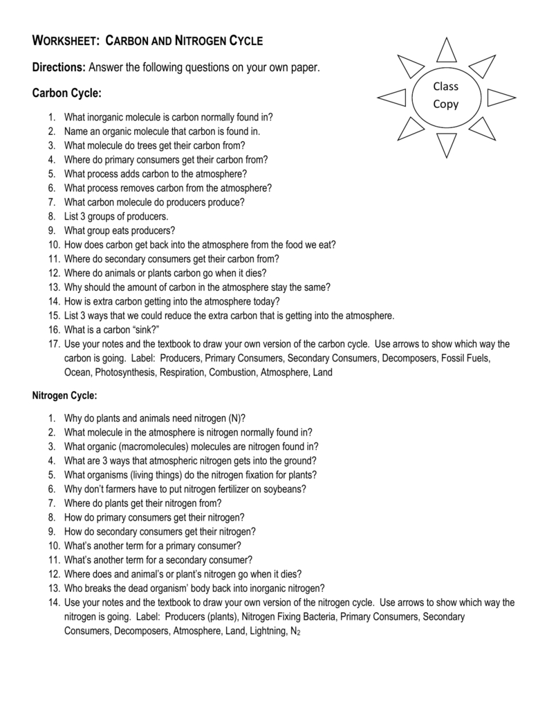Worksheet Carbon And Nitrogen Cycle Within Nitrogen Cycle Worksheet