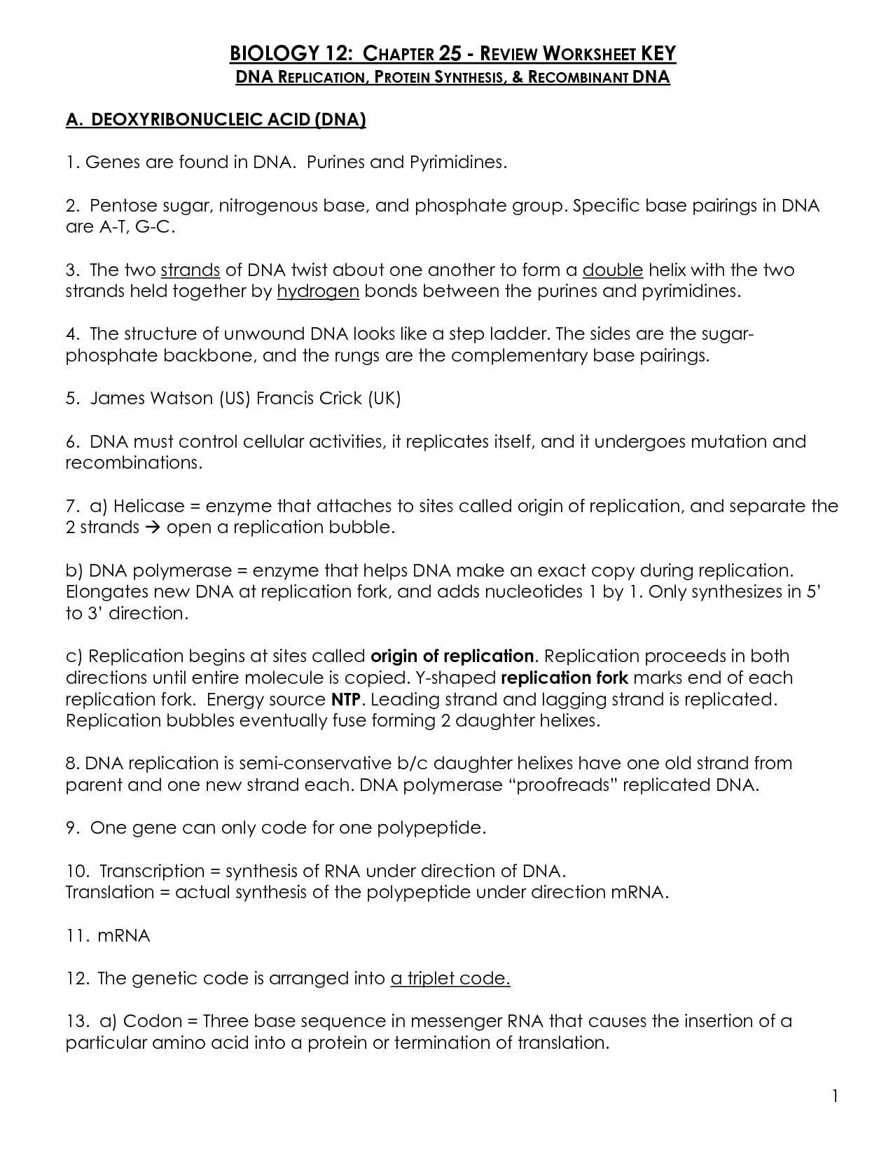 Worksheet Transcription And Translation Worksheet Answers And Transcription Worksheet Answer Key